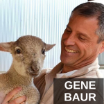 HS 258 – Gene Baur on Eating Mindfully And the Maltreatment of Animals In The Food Industry