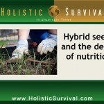How Hybrid Seeds Ruined America
