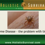The Hidden Dangers of Lyme Disease