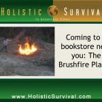 """Brushfire Plague"" with R.P. Ruggiero"