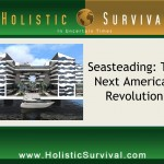 Seasteading: The Next American Revolution