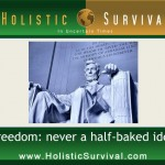 Freedomnomics: Free Market vs. Half-Baked Ideas