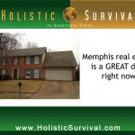 What Does Memphis Have To Do With Your Economic Survival?
