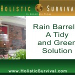 Rain Barrels: A Tidy and Green Solution