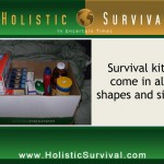 The Survival Mom with Lisa Bedford