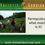 Can Permaculture Save the World?