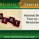 U.S. National Debt - How High Can We Go?