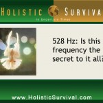 Dr. Horowitz: 528 Hz is the Love Frequency