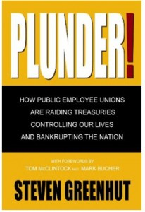 Plunder: How Public Employee Unions Are Raiding Treasuries Controlling our Lives and Bankrupting the Nation
