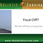 The Fiscal Cliff was Just the Beginning - Say Hello to the Debt Ceiling